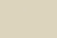 5982_Mussel