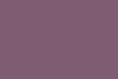 7167_Viola