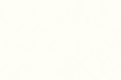 8100_Pearl White